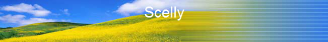 Scelly